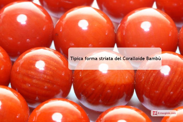 Corallo Bambù, COral Bambù