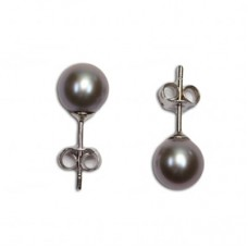 Pearl Earrings gray 6-6½mm in Gold 18K