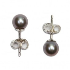 Pearl Earrings gray 6-6½mm in Silver